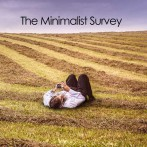 What's holding you back – The Minimalist Survey Part 3